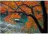 Experience-Japan-Evan-Pike-40
