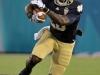 December 29 2011:  Cierre Wood #20 in action during NCAA football Champs Sports Bowl between Notre Dame Fighting Irish and Florida State Seminoles at Florida Citrus Bowl Stadium, Orlando, Florida.