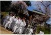 Experience-Japan-Evan-Pike-38