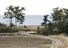 tsunami pictures: beach in Odaka, Fukushima Prefecture, Japan, before tsunami