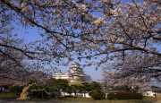 https://www.evanpike.com/new_site/wp-content/uploads/2012/03/Experience-Japan-Evan-Pike-30.jpg