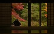 https://www.evanpike.com/new_site/wp-content/uploads/2012/03/Experience-Japan-Evan-Pike-54.jpg